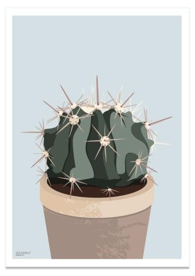 kaktus_1_50x70