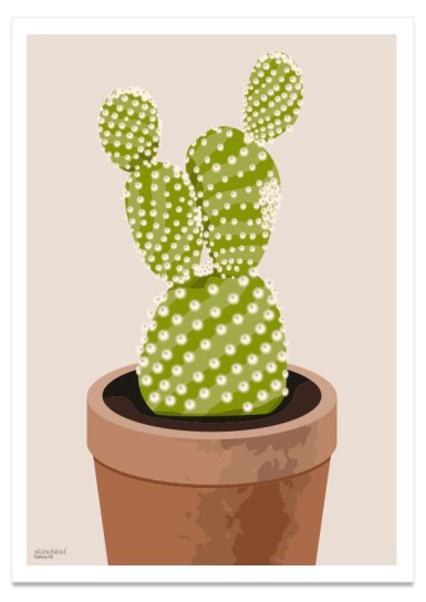 kaktus_2_50x70